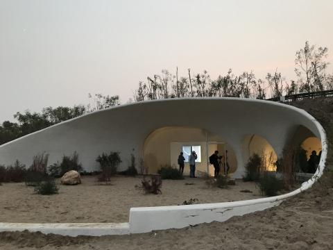 郑波 《沙丘植物园》
