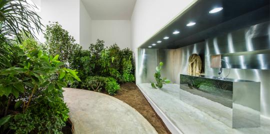 来自荷兰的艺术家约翰.阿姆雷德将户外的绿植和泥土搬进了展厅,构造了一个真实的花园