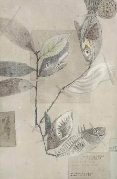 张天幕 《夹在新华字典里的秘密 之鱼》 76x50cm 纸本坦培拉 2018