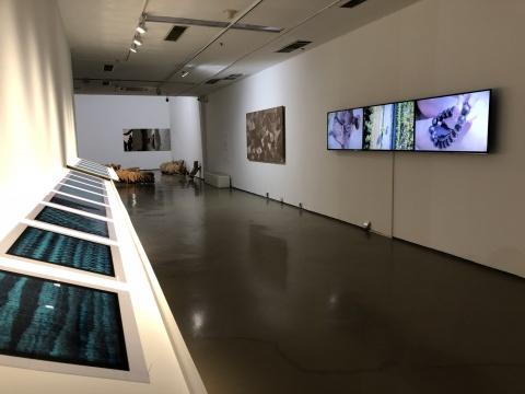 周钦珊胶片作品、马秋莎架上装置及视频作品