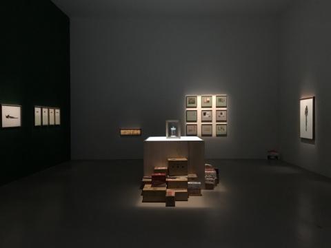 """2018台北双年展,""""后自然""""之下对美术馆体制的批判?"""