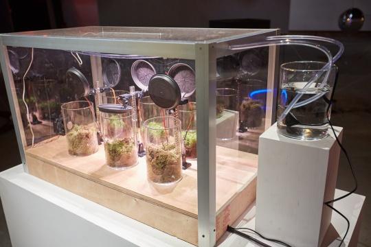 克里斯蒂娜·芬克《颗粒物》装置 污染溶剂实验 2018