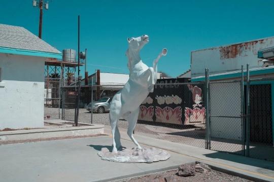 梁奥迪 《White horse in dessert》 宣纸数码印刷(Edition of 7) 70 × 100 cm 2018