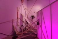 五位年轻艺术家,在泰康空间追踪末日松茸,毛晨雨,铁木尔·斯琴,刘月,郭城,王凝慧