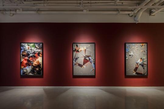 《图像志#根据鲁本斯 猎虎》180×120cm(每张) 系列数字微喷 2014