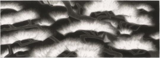 《唯见松》 223x615cm 纸本水墨 2019