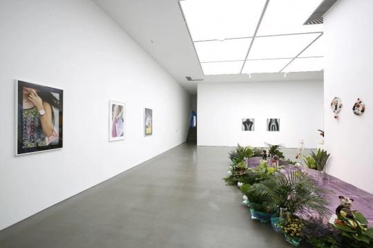 一楼展厅展出了米歇尔·埃伯利斯、潘望舒、孙一钿、阿玛利娅·乌尔曼的作品