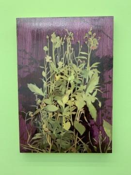 《低迷愉悦》 40×28cm 木板油画 2018-2019
