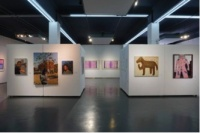 """798国际艺术交流中心""""来路不明•当代艺术展""""开幕 持续助力青年艺术项目"""