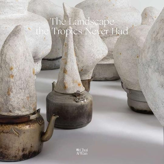 hui Wan《热带从未有过的风景》专辑封面,2017年发行封面艺术家:李钢