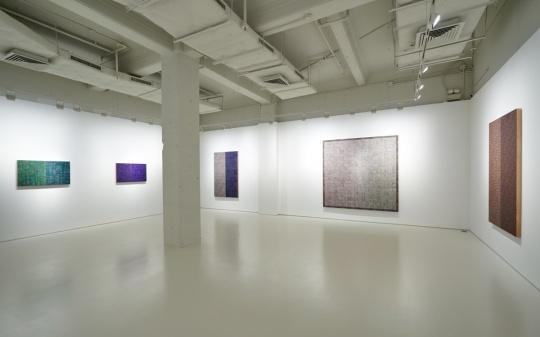 麦克阿瑟·比尼恩在MDC画廊展览现场