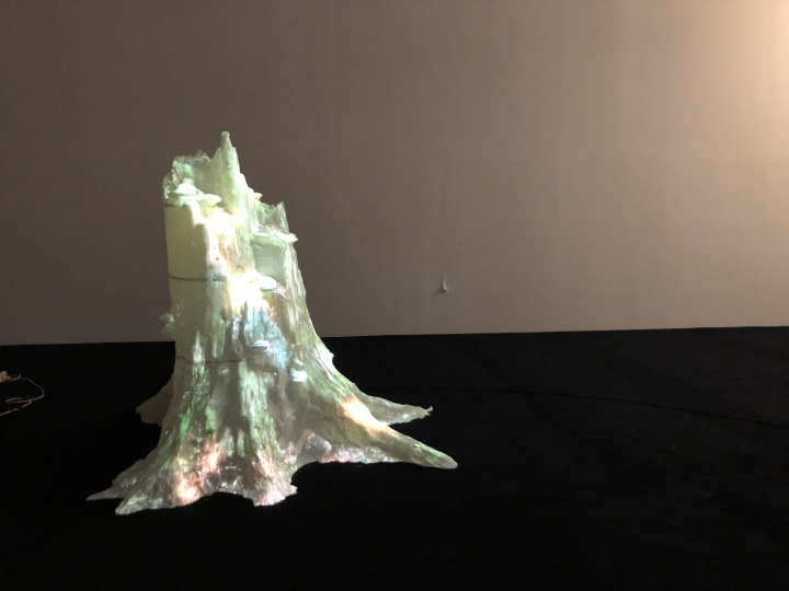 帕森·布鲁瑟&玛吉特·卢卡斯(Persijn Broerse & Margit Lukász,荷兰)《仍旧我心》高:165cm 3D打印影像 2018  作品位置:粮仓#1展厅+8-A、8-B