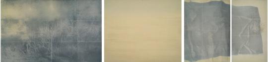 王永学《沙洲·天鹅绒》120×500cm 纸本铅笔综合材料 2017