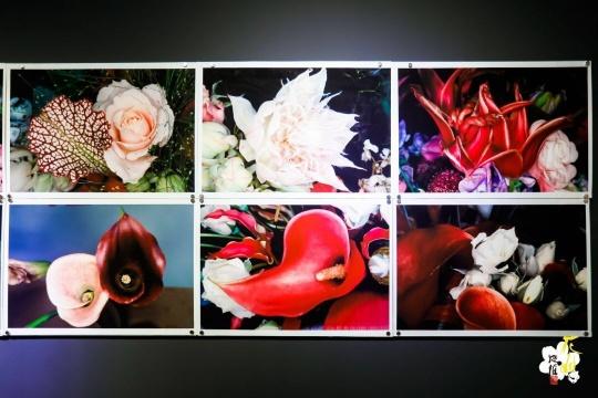 """""""花曲""""系列 110×75cm c-print"""