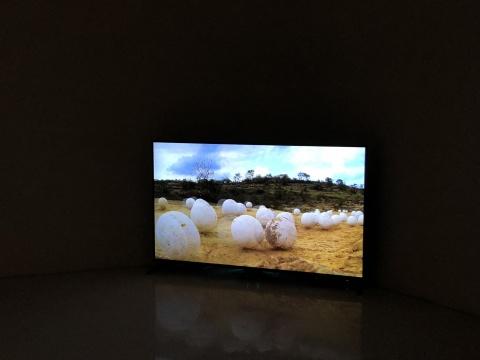 米格尔.安赫尔.里奥斯的影像作品《白石》