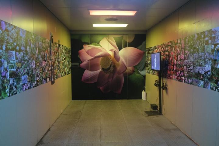 """""""农林共舞台""""展览现场,扉美术馆出入口电梯被艺术家方璐打造为一个可以让观众进入冥想的空间"""