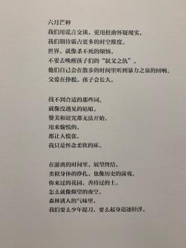 方巍根据某热点事件写下的一首诗