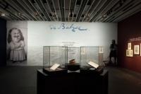 文学的舅舅是谁?陈丹青在木心美术馆这样解释,毕加索,陈丹青