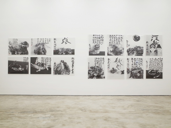 """亦安画廊迁址七棵树之后的首个展览""""荒木经惟·朱新建——天上大风""""展览现场(©️亦安画廊)"""