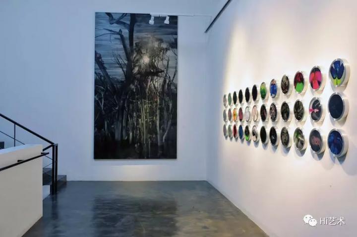 """2008年7月,黄宇兴的首次个展""""改变中的生命史""""在上海红桥画廊"""