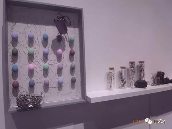 """蓝庆伟于2016年策划的""""稻粱谋:公共关系、身份介质与生产——杨方伟实验艺术项目展现场,成都当代美术馆"""