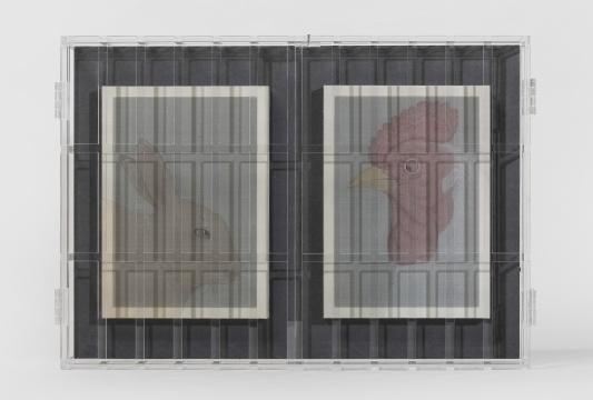 王晴园《伴侣》40×56cm 绢本绘画装置 2019