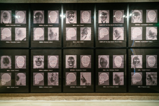 展览现场,王广义的《通俗人类学研究》