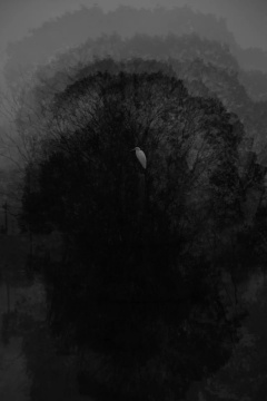 《归去-1》80×53.3cm 无酸收藏艺术纸2017