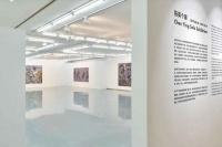 用抽象的语言表达具象 陈英的视觉迷宫在金杜开幕