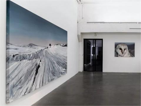 """在山林中忘我的""""捕猎者"""",桑迪亚哥·达涅兹在白盒子里""""回到自然"""""""