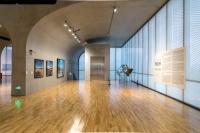 人来鸟不惊,法国艺术家让-吕克·米蓝鸟类摄影个展亮相龙美术馆