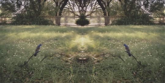 让-吕克·米蓝 《2006年4月、5月,#407》153×303厘米 彩色照片 2006年