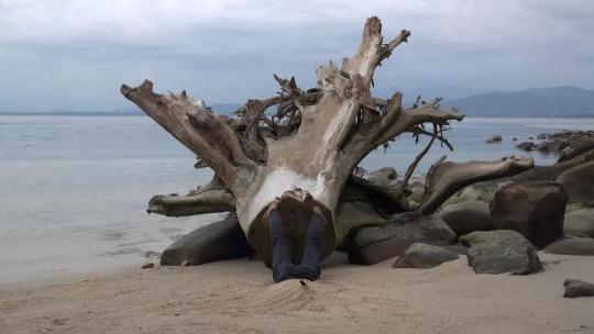 《树根》,2019,行为,金之岛,马来西亚,单频录像(彩色,有声),11'48