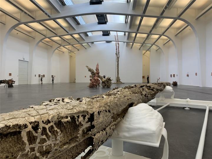 """""""马修·巴尼:堡垒""""UCCA尤伦斯当代艺术中心展览现场"""