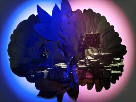 凯瑟琳·安德鲁斯 《国花》 不锈钢、墨、LED 灯 2017