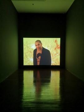 妮科尔·米勒 《指挥家》 单频彩色无声影像 2009