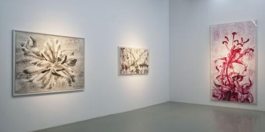 复刻威双作品以外 艾米李呈现最全媒介的陈琦个展