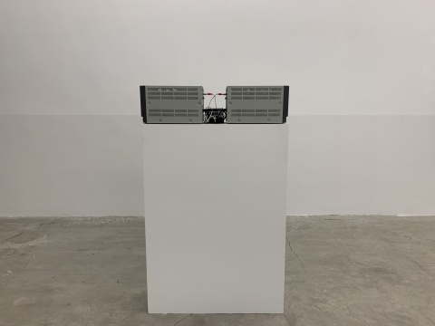 """单行道画廊迁址后首展 刘国强""""图形""""的秩序与逻辑"""