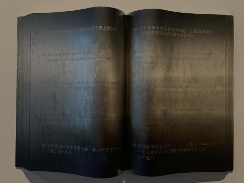 刘建华 《你能告诉我吗?》 39×27×4cm/本 不锈钢、投影循环播放 2005-2006