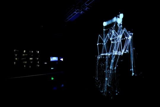 2013年费俊与朱迪思.道尔共同创作的《姿态云-姿态墙》