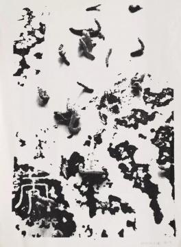 梁绍基《自然系列 No.8 》81 x 59 cm 丝网版 1993