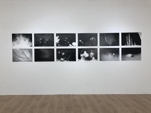 范西 《All Beings》系列收藏级喷墨打印作品展览现场