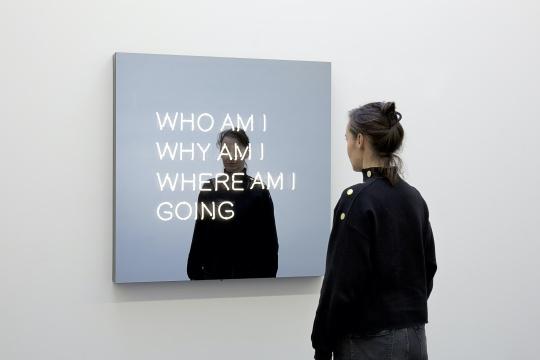 杰普·海因 《我是谁,为什么是我,我要去哪里》 100x100x10cm 粉末涂层铝、氖管、双面镜、粉末涂层钢、变压器 2017