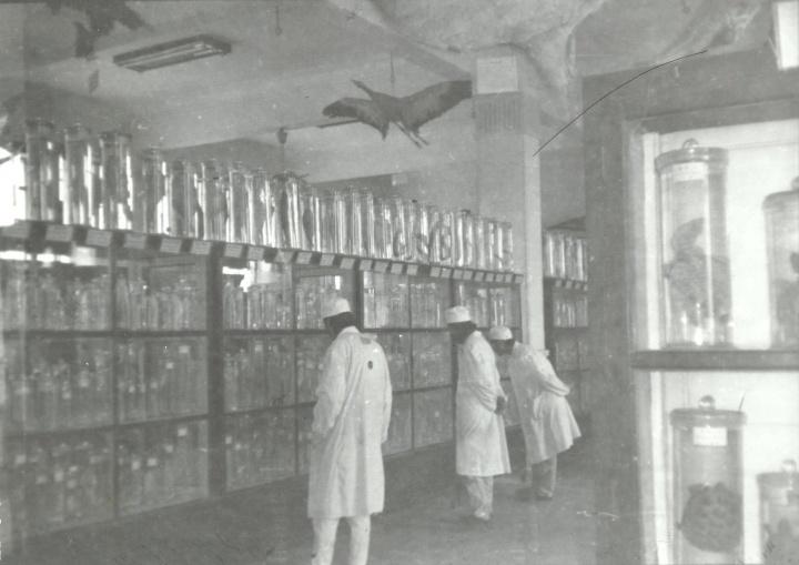 1992年,新历史小组《消毒》提取疫苗,武汉大学生物系实验室