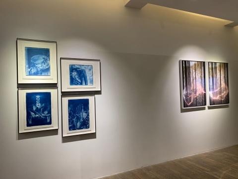 """胡为一""""春风""""系列 100×70cm 摄影、数码微喷、哈内姆勒纯棉、硫化钡、悬浮白木框装裱 2020(右)"""