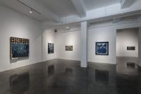 """艺·凯旋画廊带来张丹个展   """"生态剧场"""" 四大章节的反思与救赎"""