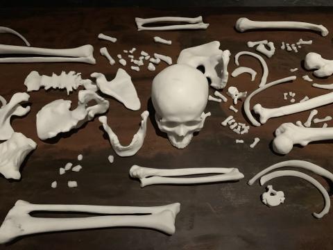张培力 《全身的骨头》白色卡拉拉大理石 2019