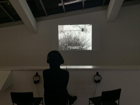 沈莘 《雪国》 单频录像(黑白,有声) 18'24'' 2013