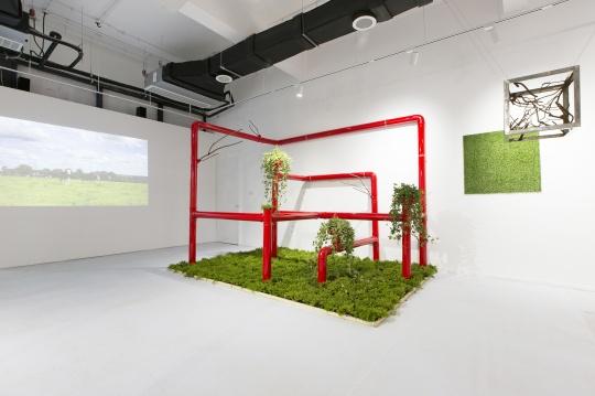 六位年轻艺术家在太湖畔霓美术馆,一场当代艺术与植物艺术跨界展