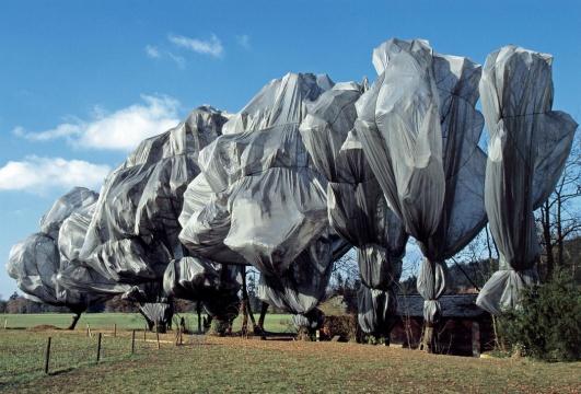 《包裹树木》瑞士里恩1997-98摄影:Wolfgang Volz©1998Christo